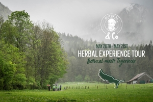 <strong>Herbal Experience Tour 2019 / Botucal Rum<span>Sierra Madre GmbH</span></strong><i>→</i>